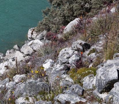 lagune de Llaganuco