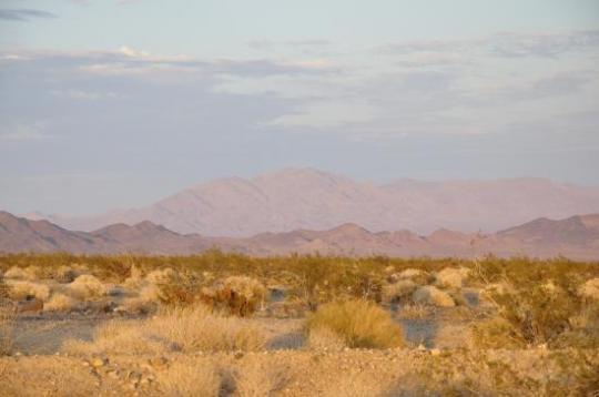 desert du Mojave