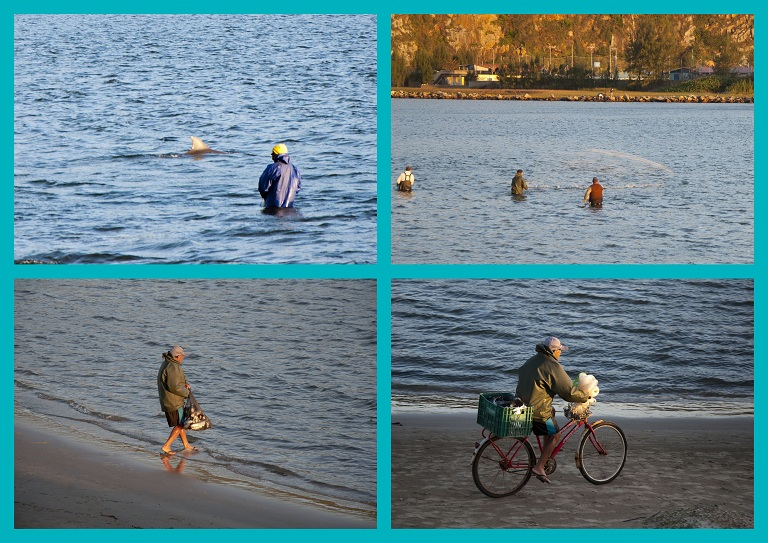 peche-avec-les-dauphins.jpg